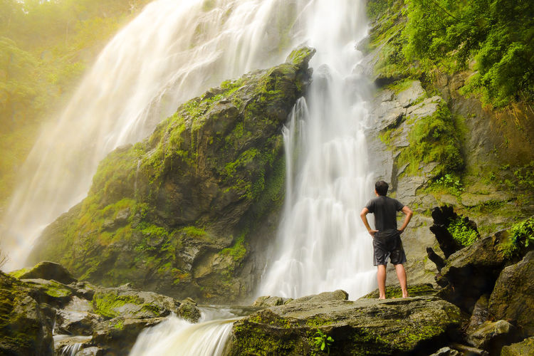 Rear view of man standing on rock by waterfall in forest