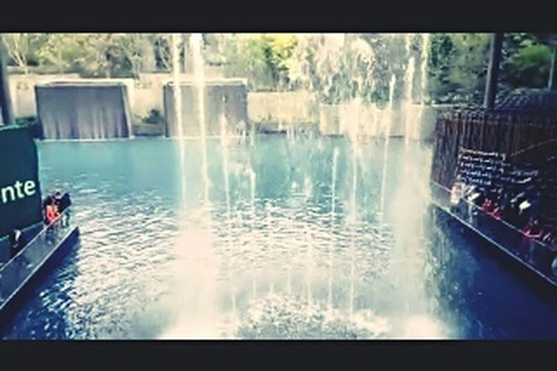 Oasis Coyoacan Relaxing Mx  👌