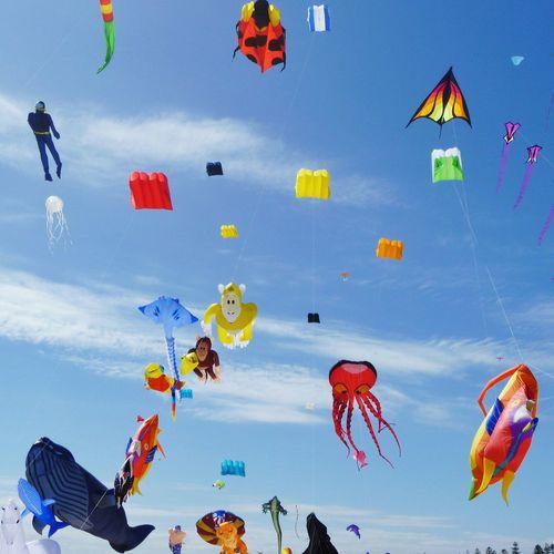 Kites in sky