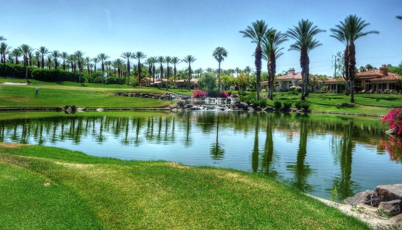 A beautiful day at the club Beauty In Nature Clear Sky Country Club Day Footpath Golf Golfcourse Grass Green Color Nature Outdoors Palm Tree Pond Resort Scenics Tourism Tourist Tranquil Scene Tranquility Travel Destinations Vacation Vacations Water