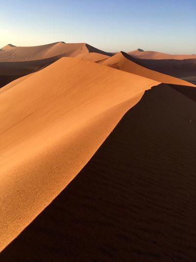 Dune 45, between Sesriem and Sossusvlei. Tonal Orange Color Angle Desert Contrast Sesriem Sossusvlei Namibia Africa Dunes EyeEm Selects Desert Scenics - Nature Landscape Land Sand Dune 17.62° Sand Arid Climate Beauty In Nature Remote No People 17.62°
