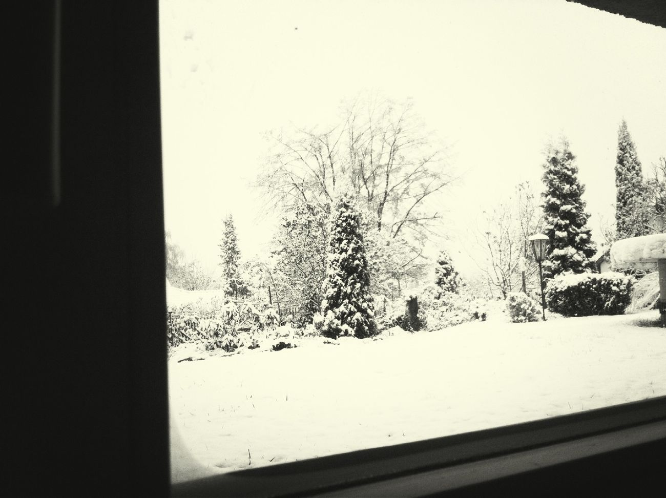 From My Window