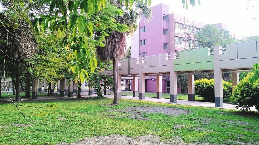 My Brother  School ✌ School