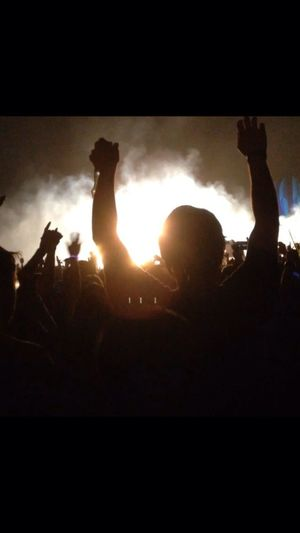 Found this pic from this years firefly music festival ?✌️⛺️
