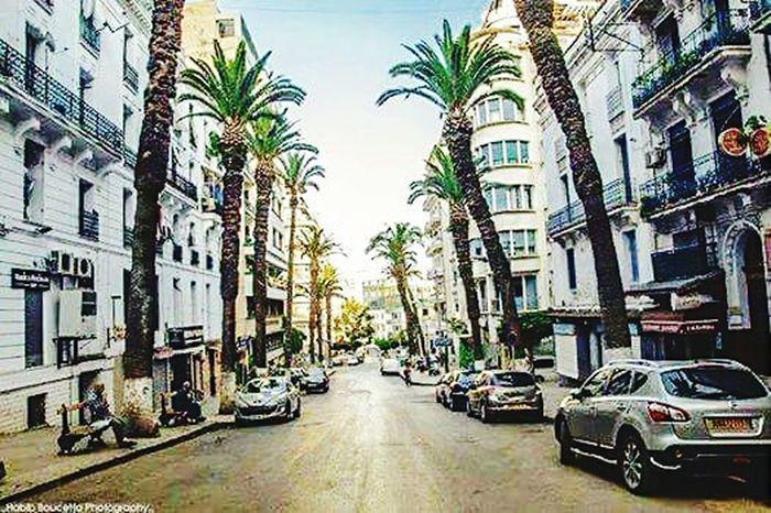 Alger. Algérie