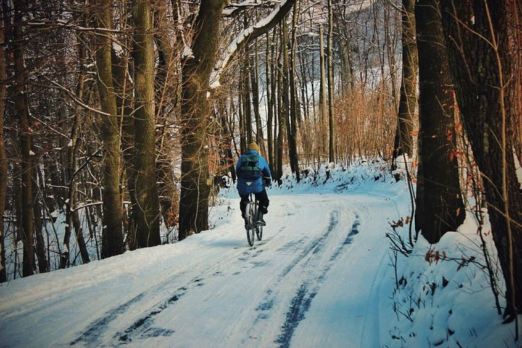 Winter Wintertime Crazy Crazy Moments Bycicle Bycicling Fun Funny Slide Deepfreeze