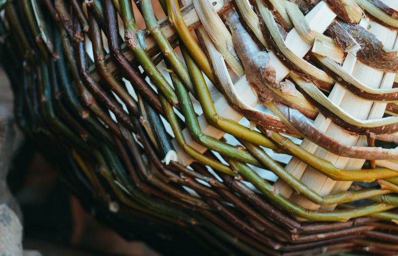 Green Color Wood Brown Close-up For Sale Indoors  Large Group Of Objects Market No People Retail  Still Life Wellbeing Wicker Basket The Still Life Photographer - 2018 EyeEm Awards
