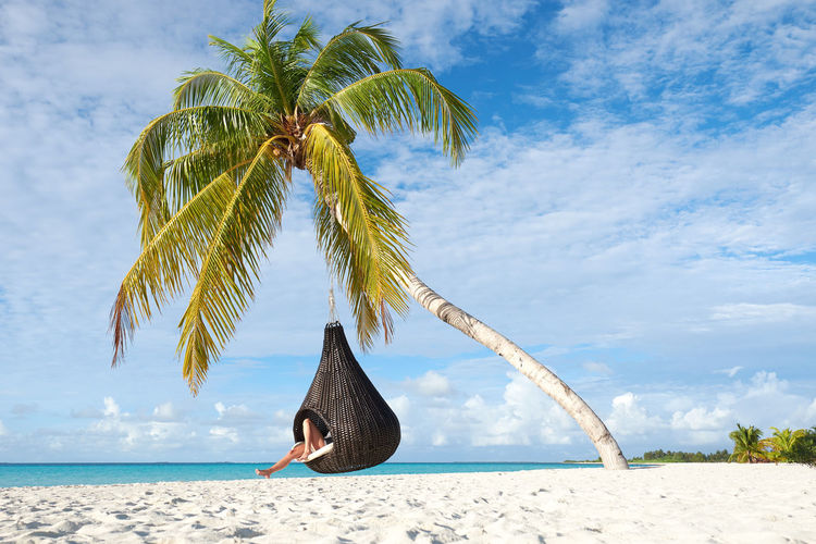 chillout at Maldives Sky Palm Tree Beach Tropical Climate Cloud - Sky Sea Plant Water Tree Land Beauty In Nature Nature Sand Scenics - Nature Day Tranquility Tranquil Scene Sunlight Horizon Over Water Coconut Palm Tree Outdoors Tropical Tree Chilling