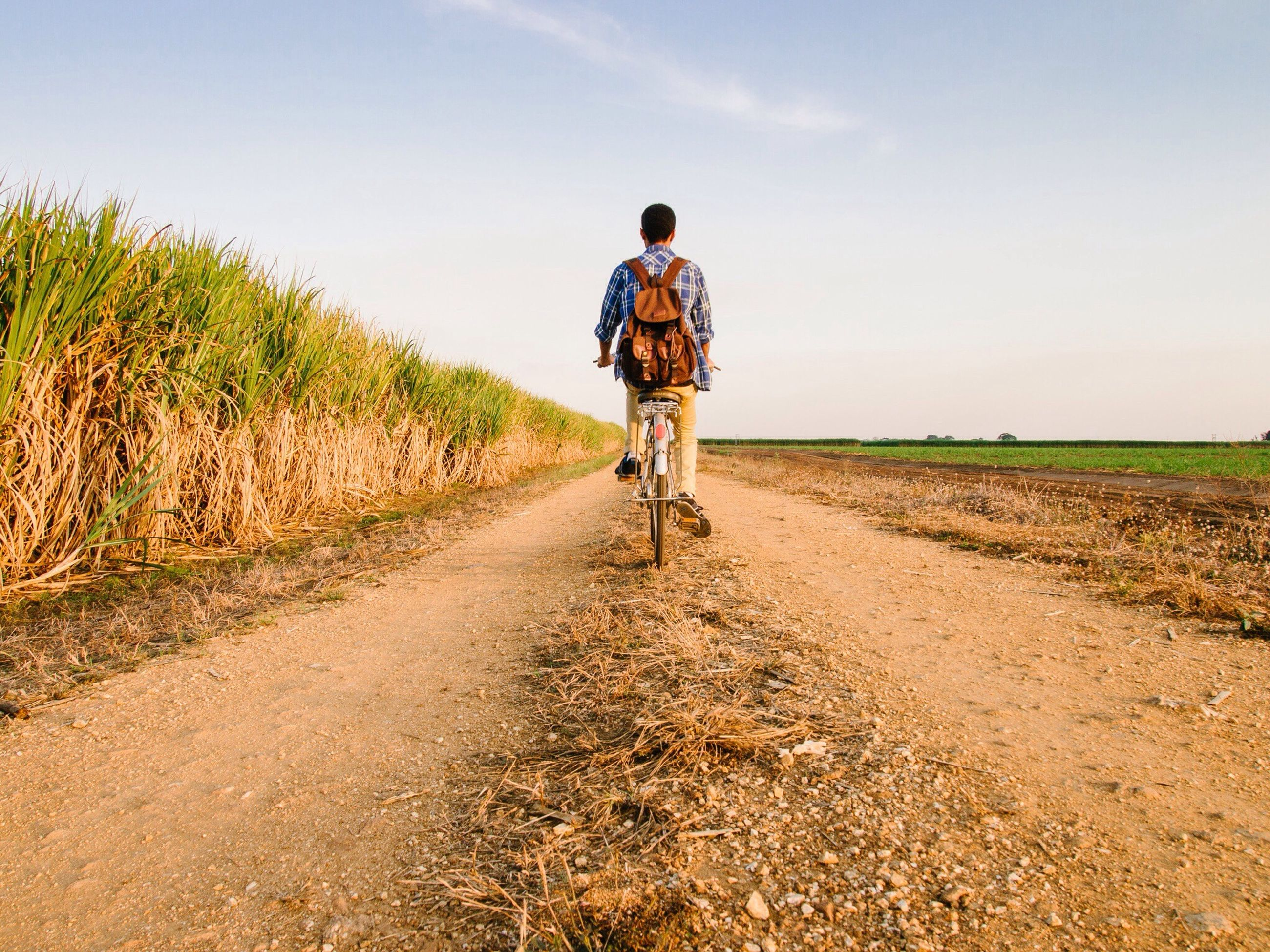 full length, lifestyles, rear view, the way forward, landscape, leisure activity, dirt road, casual clothing, sky, field, walking, rural scene, agriculture, tranquility, men, tranquil scene, nature, grass
