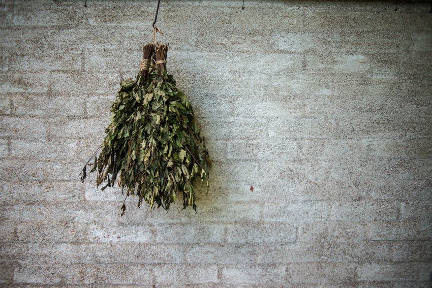 Strömforsin Ruukki Country Living Rural Sauna Besom Close-up Country Life Countryside Day Freshness Green Color Growth Hanging Indoors  Nature No People Plant Sauna Switch Sauna Whisk Tree Village Life Whisk The Week On EyeEm
