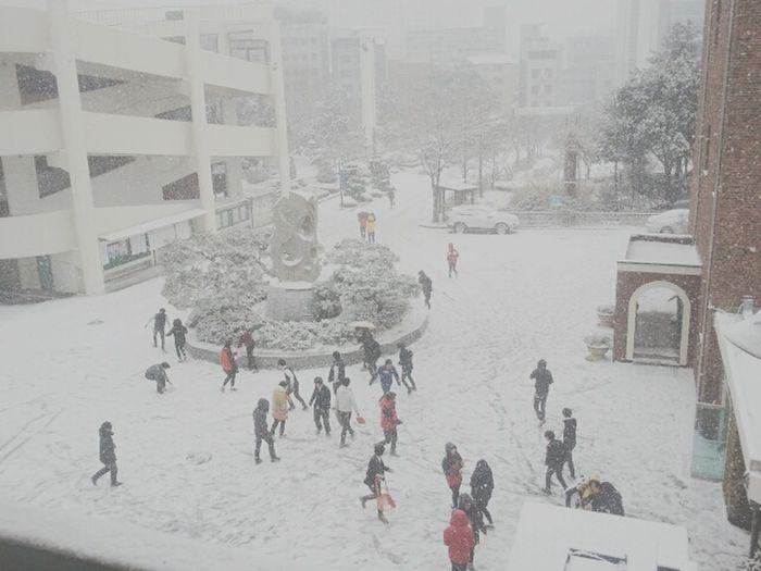 Snowing Live Highschool Winter