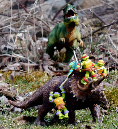 Inspired by the fabulous Turtles in Time cover by David Petersen. Toyphotography Toycommunity Teenagemutantninjaturtles Tmnt HeroesInAHalfShell Leonardo Raphael Donatello Michelangelo TurtlePower Megablocks Dinosaurs TRex  T-rex Turtlesintime Tyrannosaurusrex Triceratops Schleich
