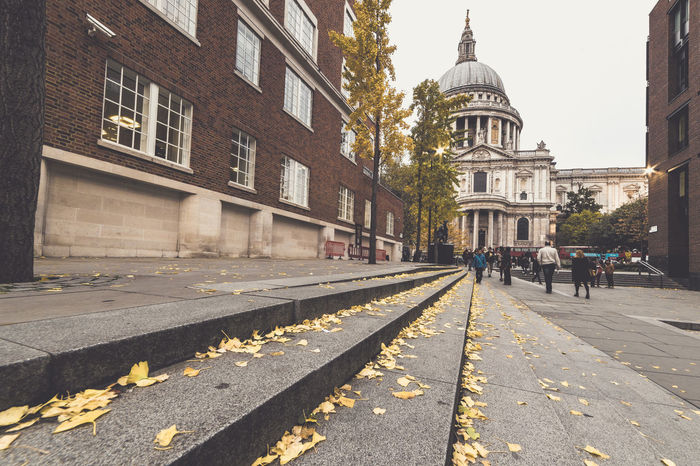 Autumn Autumn Colors Autumn Leaves City City Street EyeEm LOST IN London London Saint Paul's Cathedral Vintage Style Yellow Leaves Architecture Building Building Exterior Built Structure City Dome Leaves Travel Destinations Yellow