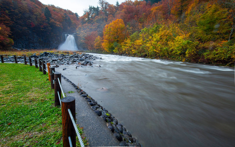 Scenic view of river during autumn