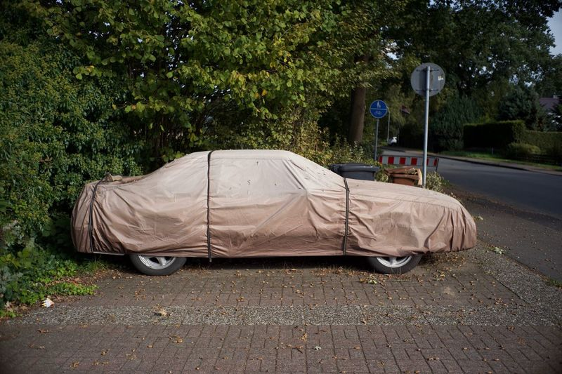 Wrapped car parked on street near park