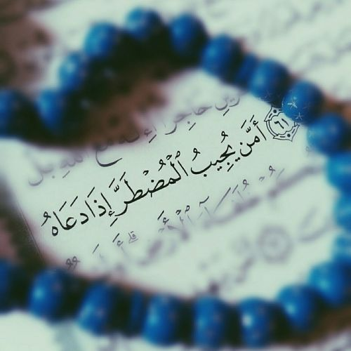 Quraan Holy Quraan