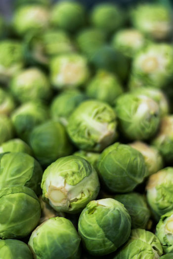 Stock Mini Cabbage Food And Drink Freshness Vegetable Market Vegetables & Fruits Axvo Brussels Sprout Cabbage Close-up Day Food Foodphotography Fresh Freshness Green Color Health Healthy Healthy Eating Healthy Food Healthy Lifestyle Raw Food Tasty Vegan Vegan Food Vegetable Vegetables