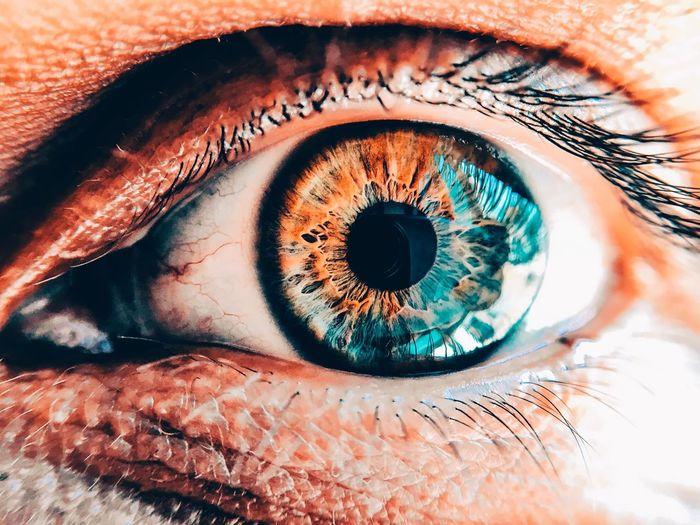 Human Eye Eyes Macro Macro Photography Detail Color Orange Blue EyeEmBestPics Light Reflection Bright