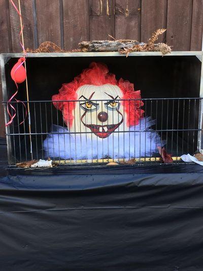 Jackson, New Hampshire Pumpkin Head Bird Cage Close-up Clown Face Day Indoors  Mammal Nature No People