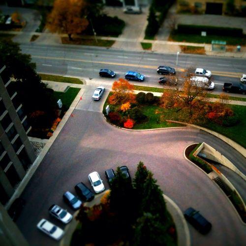 Toy city 8 in Toronto Toy City 8