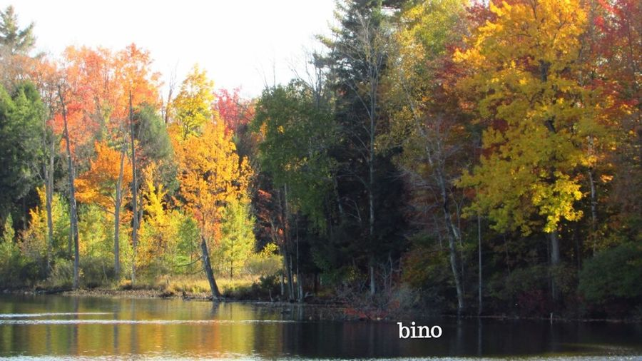 Out Shooting Autumn Beauty Center Lake Calm Water Chilly Weather Reflection Tustin Michigan