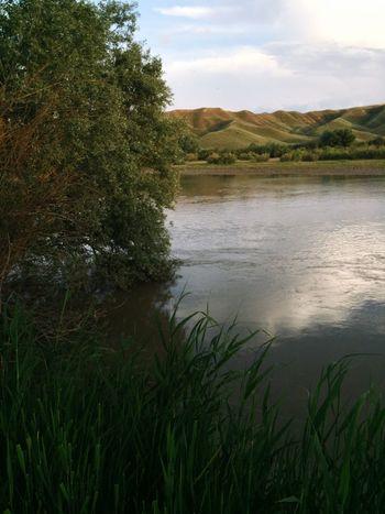Kırşehir Kızılırmak balık mangal