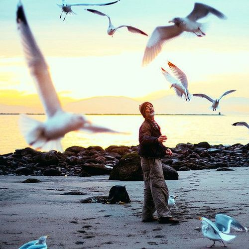 الحياة أجمل حينما نأخذها بعفوية بعيداً عن الظنون البائسة والتفكير الموجع الحياة قابلة للتغيير ونحن من بيدنا أن نعيشها ببساطة أو بتعقيد 🌺
