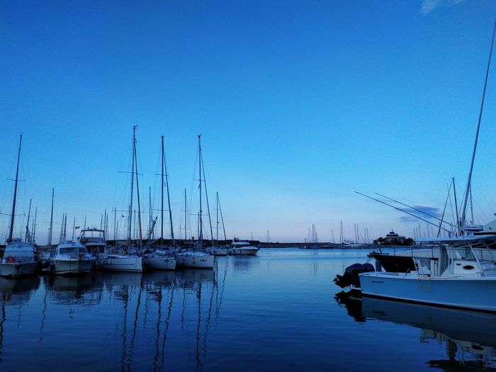 Sailboats moored in harbor