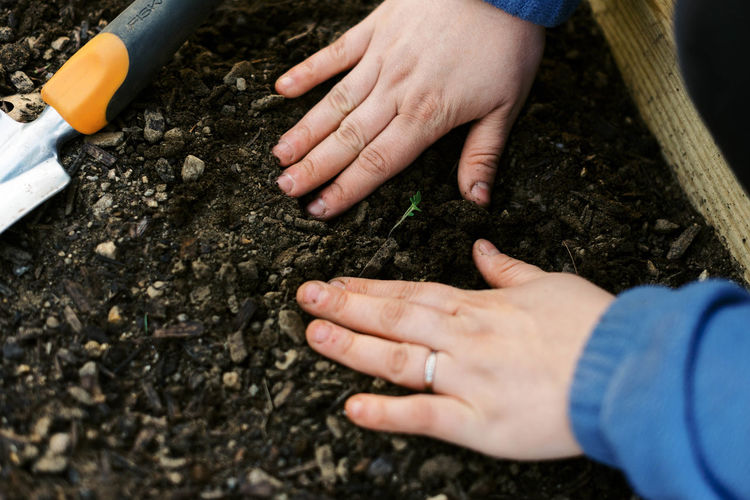High angle view of hands holding mud