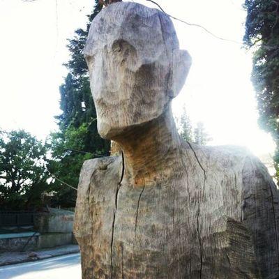 Woodensculpture Polonezkoy Adampol Istanbul turkey sculpture