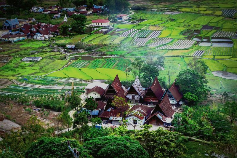 village Building Exterior Architecture Outdoors Built Structure High Angle View Day No People Nature Green Color Grass Tree Growth Beauty In Nature Perspectives On Nature Be. Ready.
