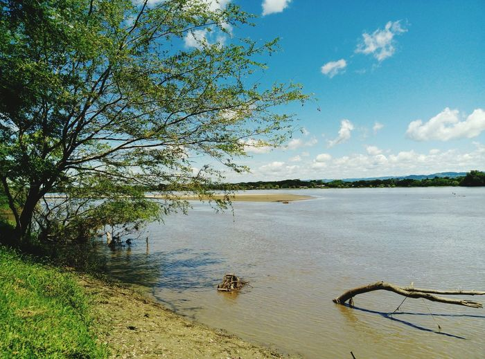 Paraisonatural Colombia Rio Magdalena Landscape Travel Destinations Water Tree River