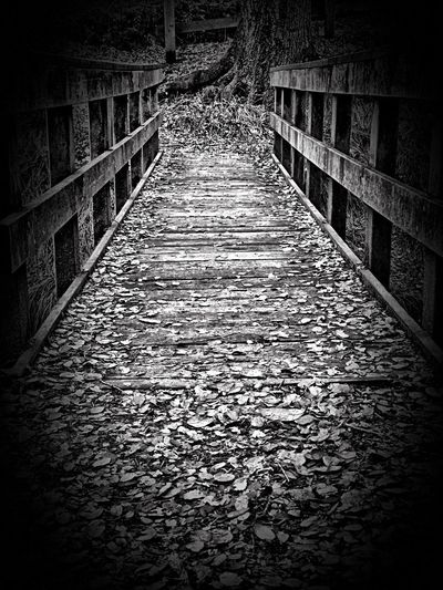 """Whose That Walking On My Bridge?"" A secluded bridge in a wooded glen, autumn leaf covered by scattered wind, perhaps a troll or even an elf could cast a spell upon myself, but cross I must to complete my travels taking a chance it all unravels. Bridges Footbridge Path Pathway Trail Blackandwhite Black And White Blackandwhite Photography Poetry Poetry In Pictures The Way Forward Direction Architecture No People Built Structure Footpath Diminishing Perspective Railing Nature Bridge Bridge - Man Made Structure"
