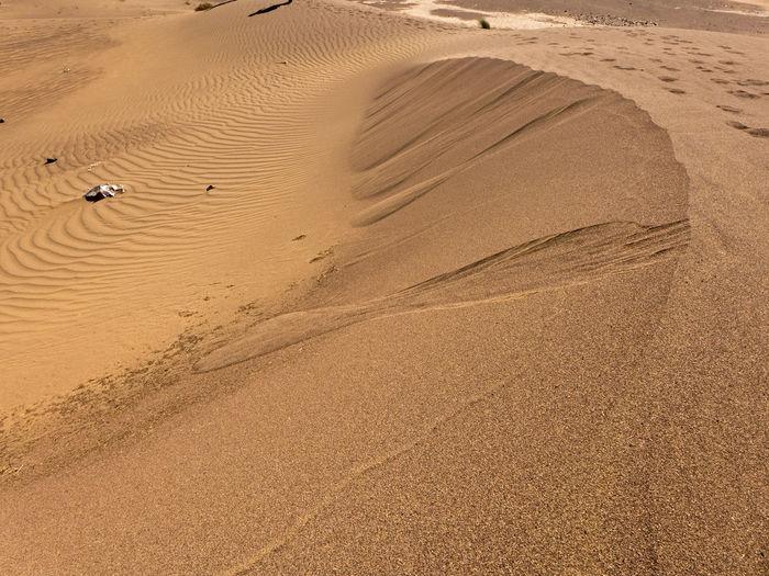 Hike through the sahara desert in the south of morocco near zagora