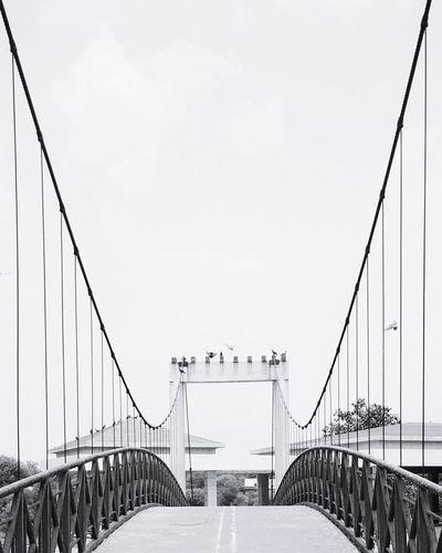 Suspension Bridge Adalajstepwell First Eyeem Photo EyeEmNewHere