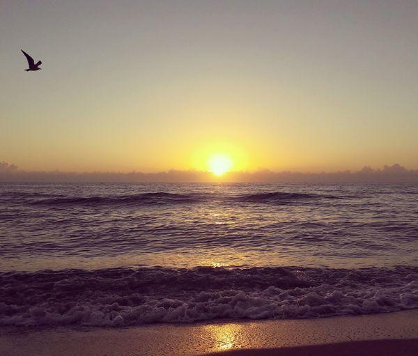 EyeEmNewHere Miami Sunset Beach Sun Water Horizon Over Water Tranquility Travel Destinations No People Sea Sky Sand Lovetourism LoveTravel Love Photography First Eyeem Photo Miami South Beach Miami FL Usa 🇺🇸☀️ Miamibeachstyle Miamiphotographer MiamiLife Miamiheat