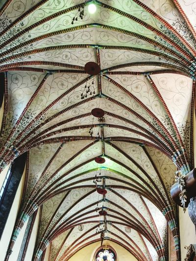 Ceiling Low Angle View Indoors  Architecture No People Full Frame Built Structure Hanging Multi Colored Day Close-up Tranquility Illuminated Travel Poland Eastern Europe Building Exterior Architectural Column Altar Spirituality Frombork Place Of Worship Religion Masuren Travel Destinations The Week On EyeEm