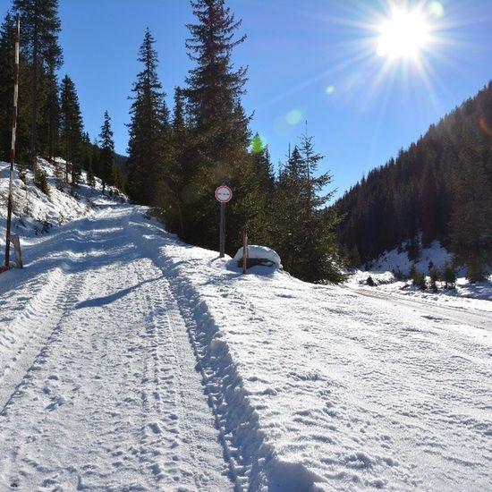 Winterwonderland Lovemycamera