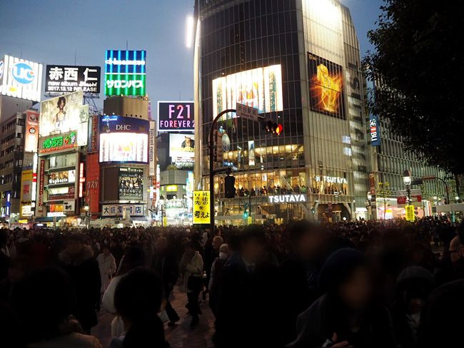 Scramble Crossing Shibuya Large Group Of People Illuminated Night Crowd Architecture Building Exterior