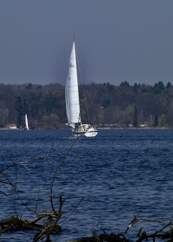 Sailing Berliner Ansichten Canvas Clear Sky Lake Leisure Activity Mast Mode Of Transportation Nature Nautical Vessel Outdoors Sailboat Sailing Scenics - Nature Sea Shades Of Blue Sky Transportation Travel Wannsee Water Waterfront Yacht