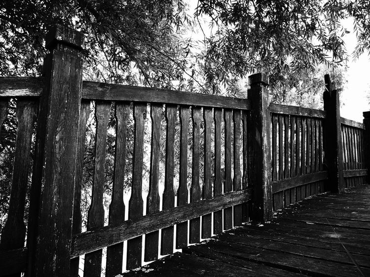 Day Built Structure Architecture Tree No People Building Exterior Close-up Outdoors Fence Bridge Fence Wooden Bridge EyeEm Best Edits Eyeemphoto The Great Outdoors - 2017 EyeEm Awards Exceptional Photographs EyeEm Diversity EyeEm Selects Getting Inspired EyeEm Gallery EyEmNewHere EyeEm Masterclass My Unique Style EyeEm Eyeemphotography Black And White Photography