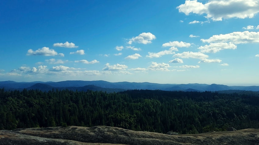 View from Bald Rock in northern California California Nature Bald Rock Clouds Day Forest Landscape Senic Sky