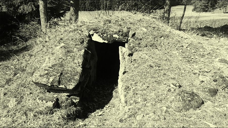 This is a 4000 year old grave.. Nothing inside except empty room. Grave Forest Old Old Grave