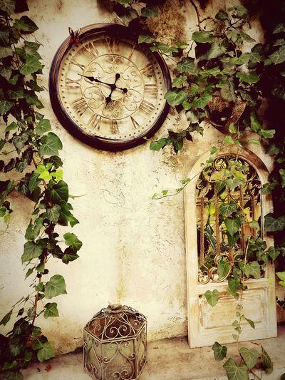 Atmosphere Teahouse Teagarden Relaxing Urban Atmospheric Mood Urban Nature Vintage