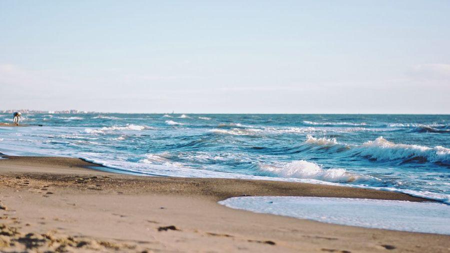 Summer Waves - Vscofilm VSCO Summer Beach