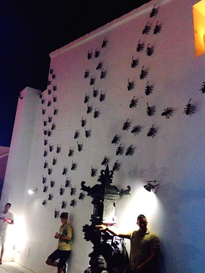 Ant Attack 🐜🐜🐜🐜🐜🐜 Ushuaia Ibiza Ibiza Ushuaïa Ants Ant Party Theme Taking Photos Enjoying Life Eyeem Party Eye EyeEm Best Shots Eye4photography  EyeEm Gallery EyeEm Best Edits EyeEmBestPics EyeEm EyeEm Nature Lover Eyemphotography Wall Streetart Streetphotography Hello World