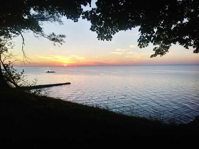 Water Tree Sea Sunset Beach Blue Sand Silhouette Low Tide Horizon Romantic Sky Seascape Atmospheric Mood Moody Sky Cloudscape Sky Only Atmosphere Majestic Dramatic Sky Coastline Coastal Feature Marram Grass Tide Wave Coast