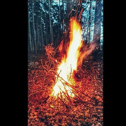🔥 🔥 Fire Firebuilding Outdoors Clumberpark Pyromaniac Firestarter Warm Night Nighttimeactivities Likeforlike Followforfollow Photography Photooftheday