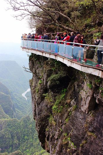Sky walk Glass Walkway On The Cliffs High Up In The Mountains Mountains Rocks Trees River Nature Scenic Advanture Travel Zhangjiajie National Park Hunan China People Glass Floor Glass Railings Colour Of Life A Bird's Eye View Eyeemphoto People And Places
