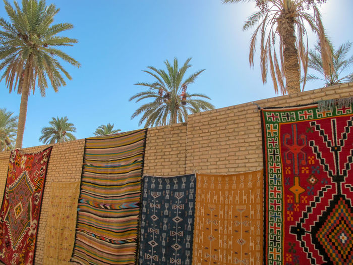 Tunisia traditional carpets Palm Tree Tropical Climate Tree No People Plant Sky Architecture Low Angle View Hanging Nature Day Built Structure Building Exterior Text Textile Communication Religion Wall Outdoors Non-western Script